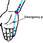 Shao Fu Acupressure Point